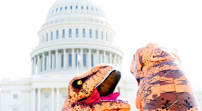 Dinos in D.C.